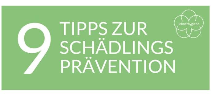 Vorschaubild 9 Tipps zur Schädlingsprävention